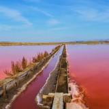 Атанасовское озеро – природное богатство болгарского края